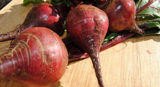 Let Beet Root for You