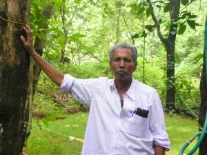 1-karim-forest