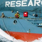World Court Orders Halt To Japan's Scientific Whaling