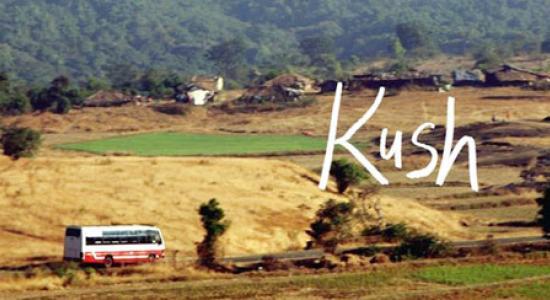 kush-2_660_112313033859