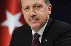 America That Erdogan Saw