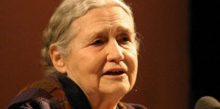 Nobel-winning novelist Doris Lessing dies at 94